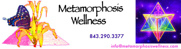 metamorphosis wellness header